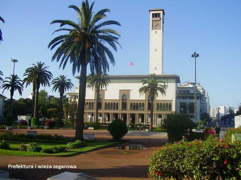 Prefektura i wieża zegarowa