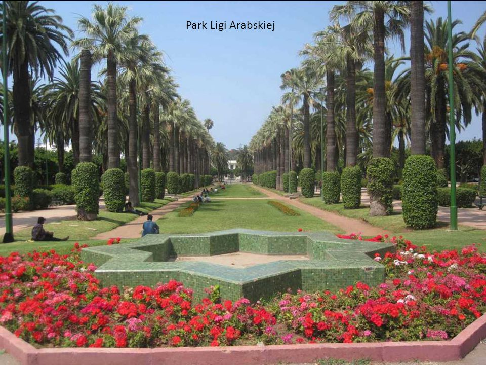 Park Ligi Arabskiej
