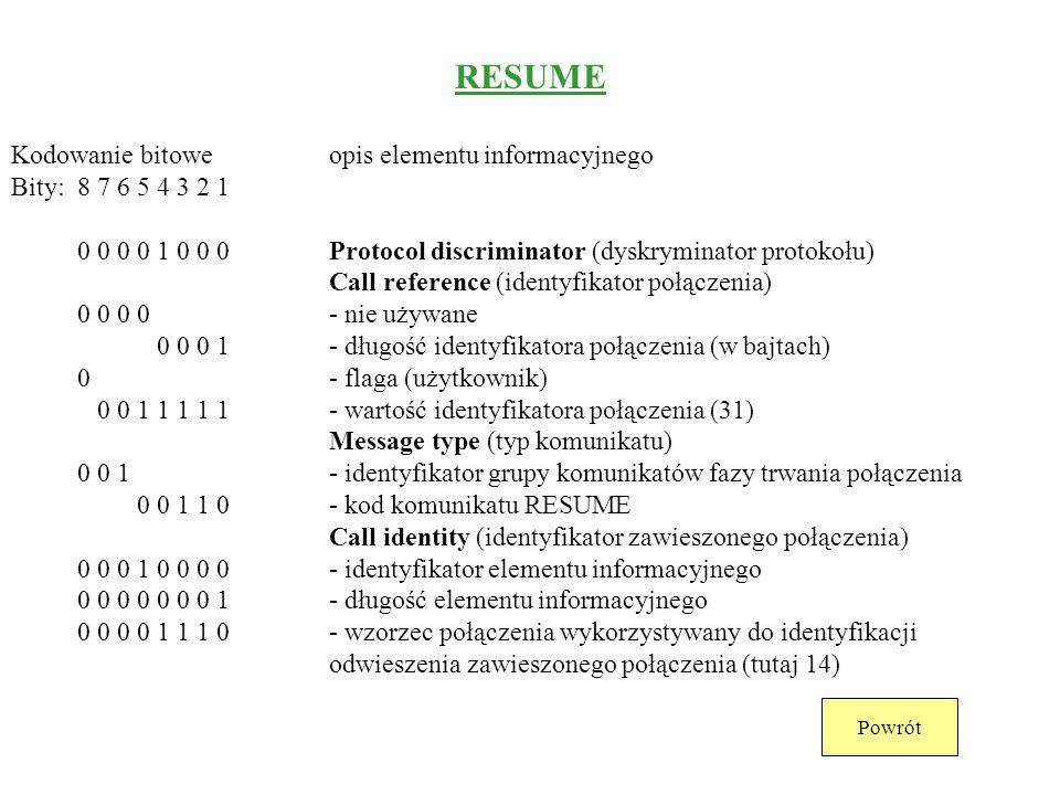 RESUME Kodowanie bitowe opis elementu informacyjnego
