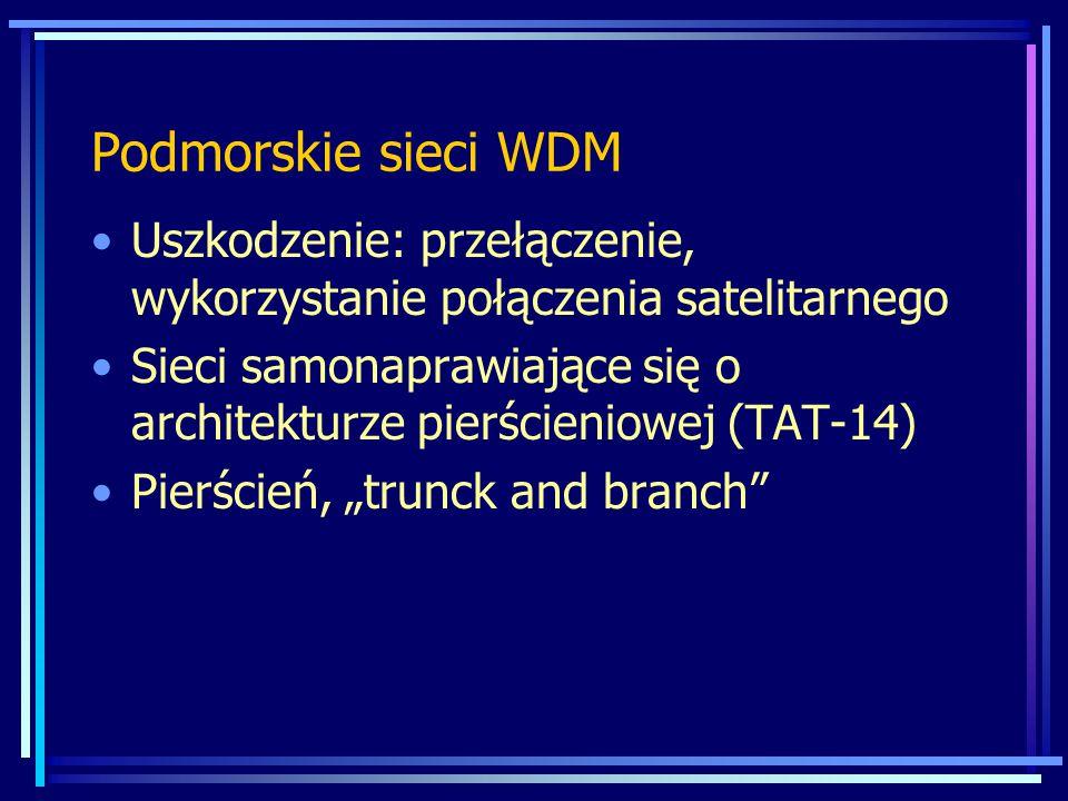 Podmorskie sieci WDM Uszkodzenie: przełączenie, wykorzystanie połączenia satelitarnego.