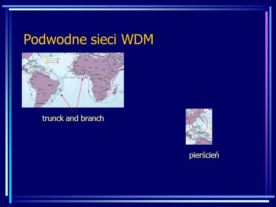 Podwodne sieci WDM trunck and branch pierścień