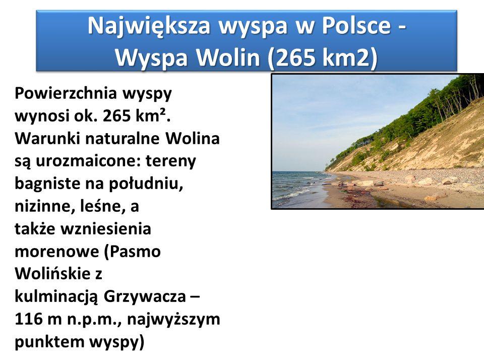 Największa wyspa w Polsce - Wyspa Wolin (265 km2)