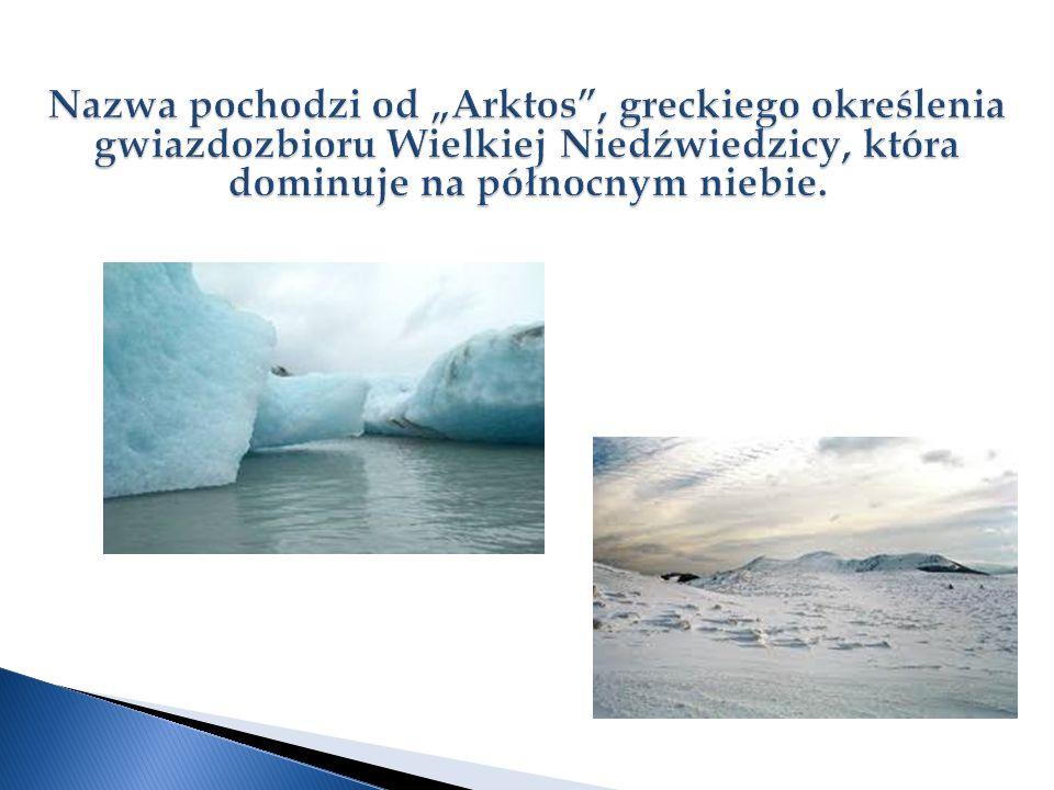 """Nazwa pochodzi od """"Arktos , greckiego określenia gwiazdozbioru Wielkiej Niedźwiedzicy, która dominuje na północnym niebie."""