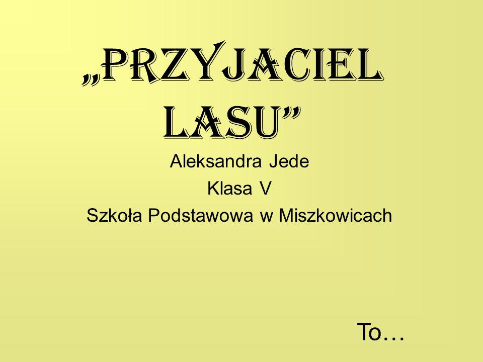 Aleksandra Jede Klasa V Szkoła Podstawowa w Miszkowicach