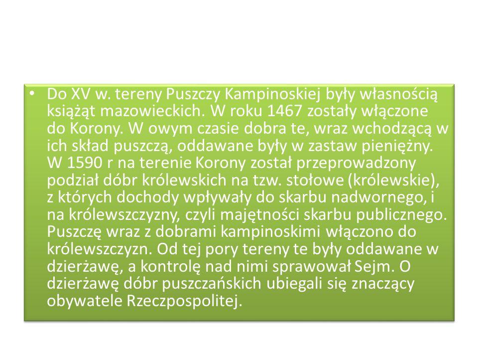 Do XV w. tereny Puszczy Kampinoskiej były własnością książąt mazowieckich.