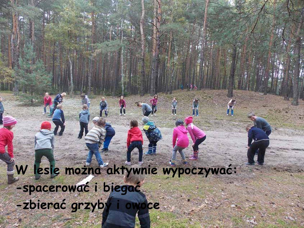 W lesie można aktywnie wypoczywać: