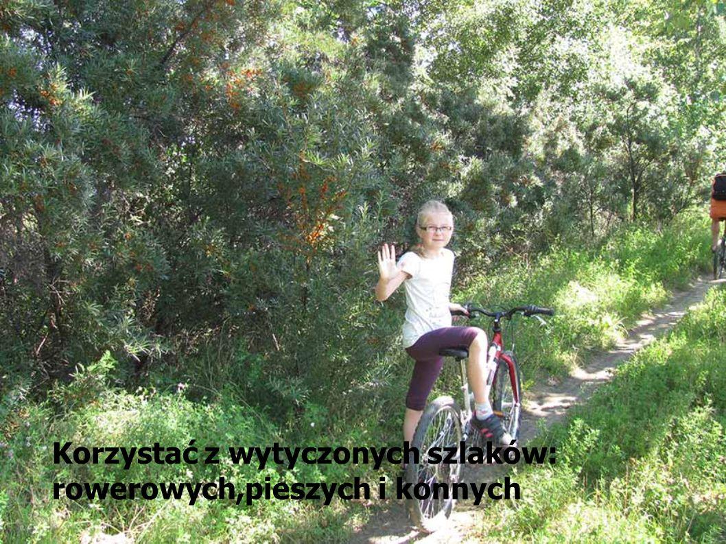 Korzystać z wytyczonych szlaków: rowerowych,pieszych i konnych
