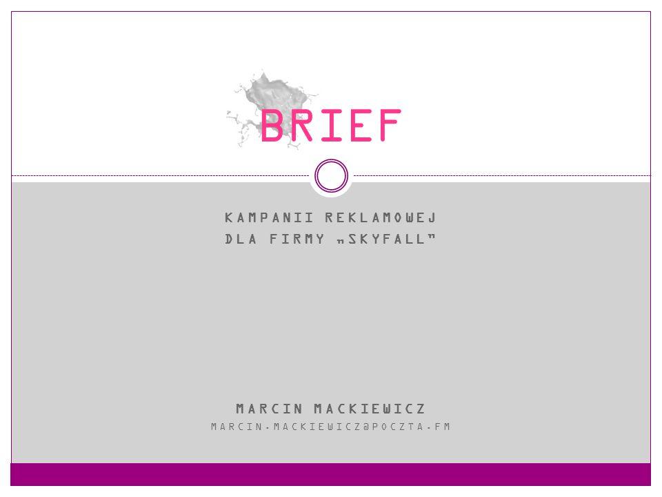 """BRIEF Kampanii reklamowej Dla firmy """"Skyfall MARCIN MACKIEWICZ"""