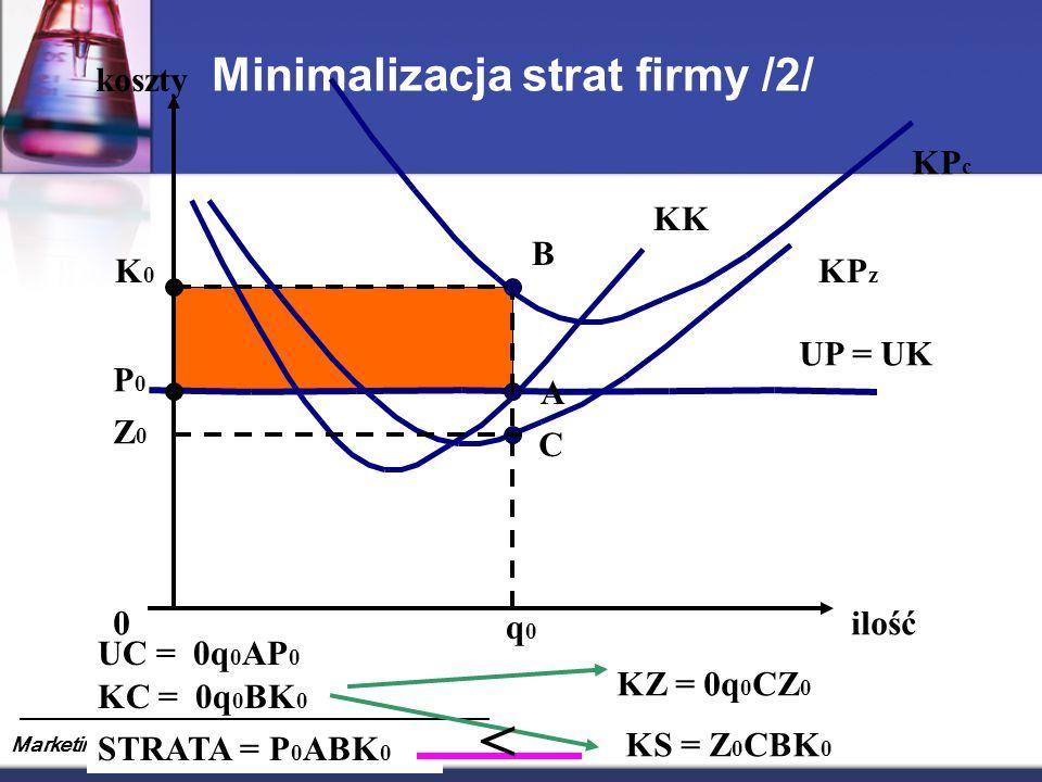 Minimalizacja strat firmy /2/