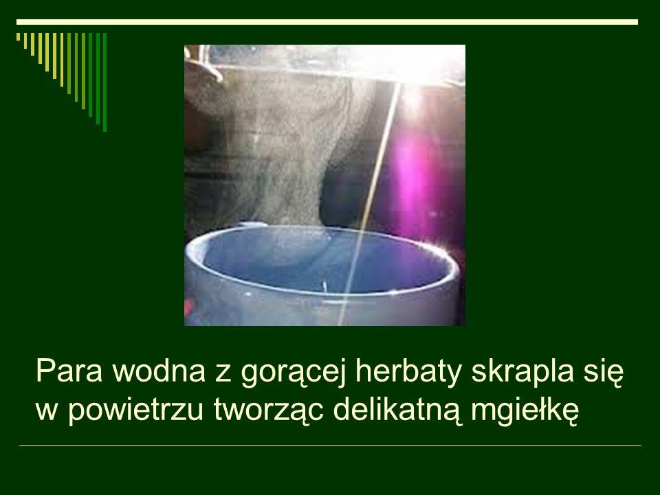Para wodna z gorącej herbaty skrapla się w powietrzu tworząc delikatną mgiełkę