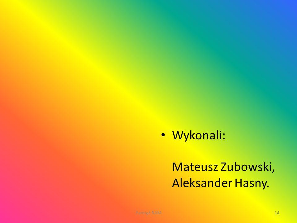 Wykonali: Mateusz Zubowski, Aleksander Hasny.