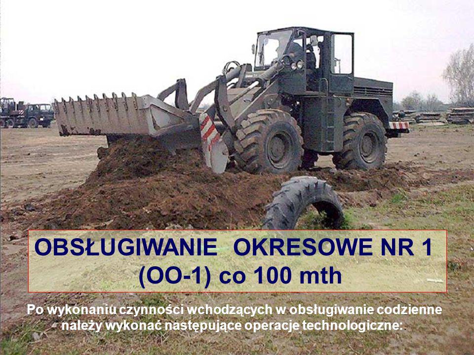 OBSŁUGIWANIE OKRESOWE NR 1 (OO-1) co 100 mth