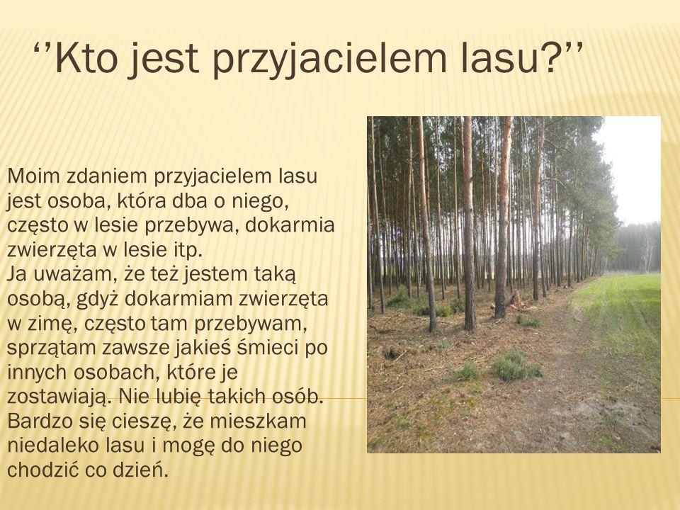 ''Kto jest przyjacielem lasu ''