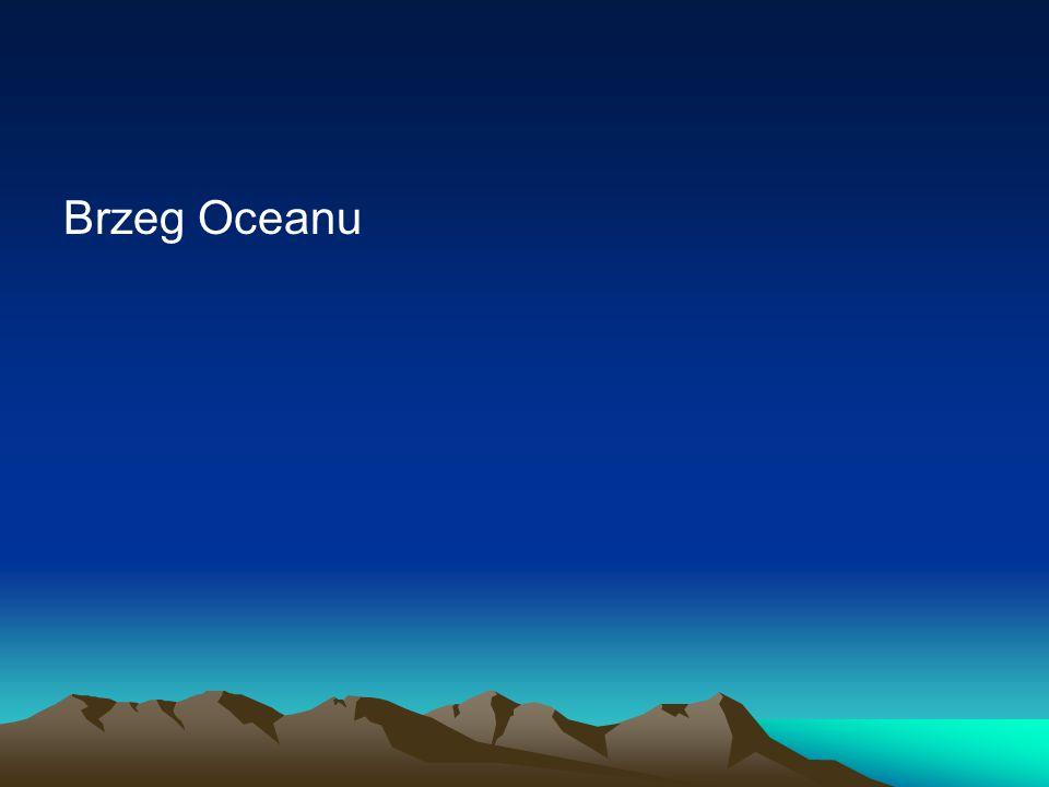 Brzeg Oceanu