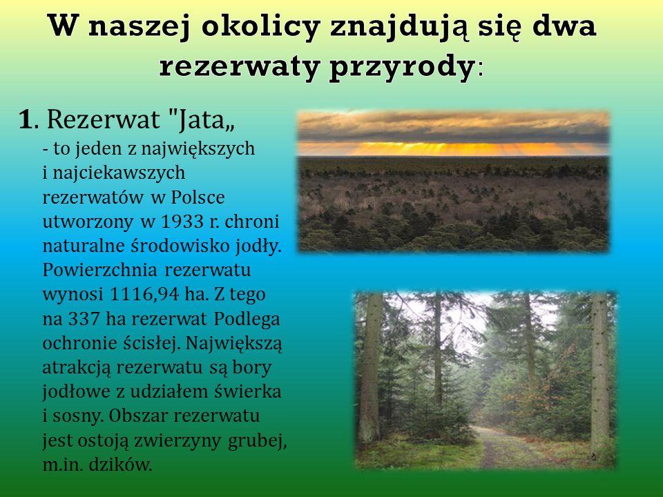 W naszej okolicy znajdują się dwa rezerwaty przyrody: