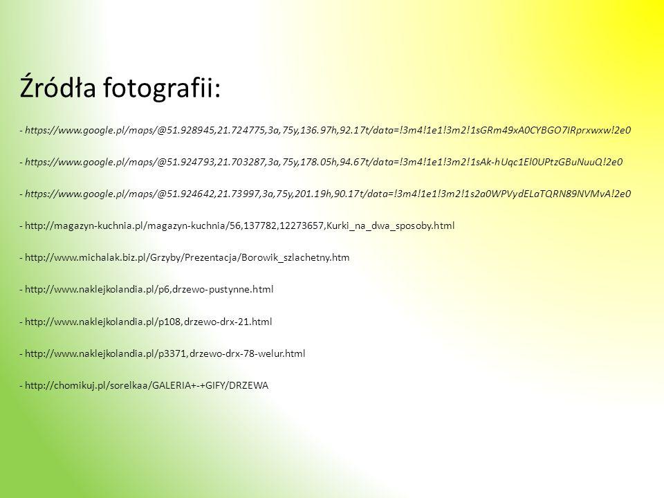 Źródła fotografii: - https://www.google.pl/maps/@51.928945,21.724775,3a,75y,136.97h,92.17t/data=!3m4!1e1!3m2!1sGRm49xA0CYBGO7IRprxwxw!2e0.