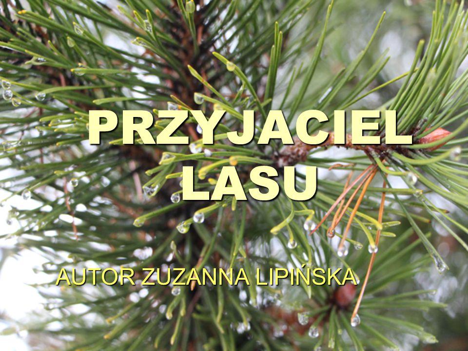 AUTOR ZUZANNA LIPIŃSKA