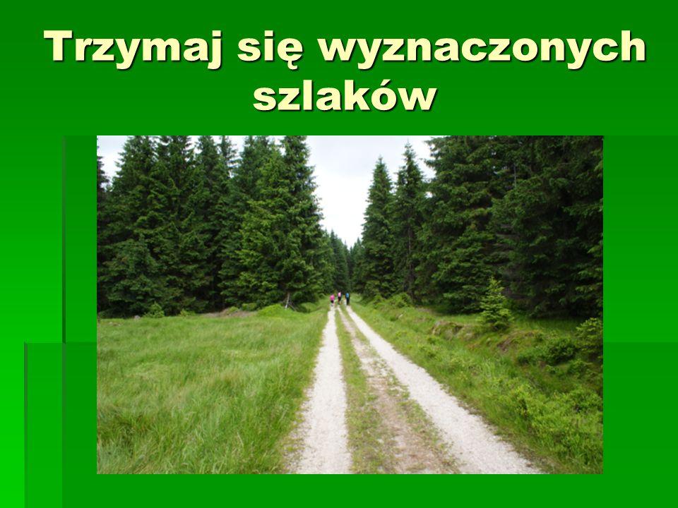 Trzymaj się wyznaczonych szlaków