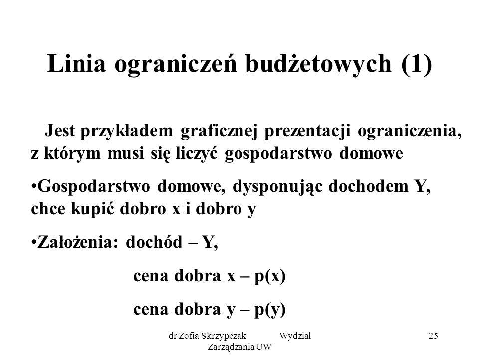 Linia ograniczeń budżetowych (1)