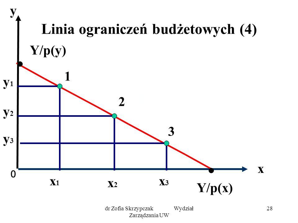 Linia ograniczeń budżetowych (4)
