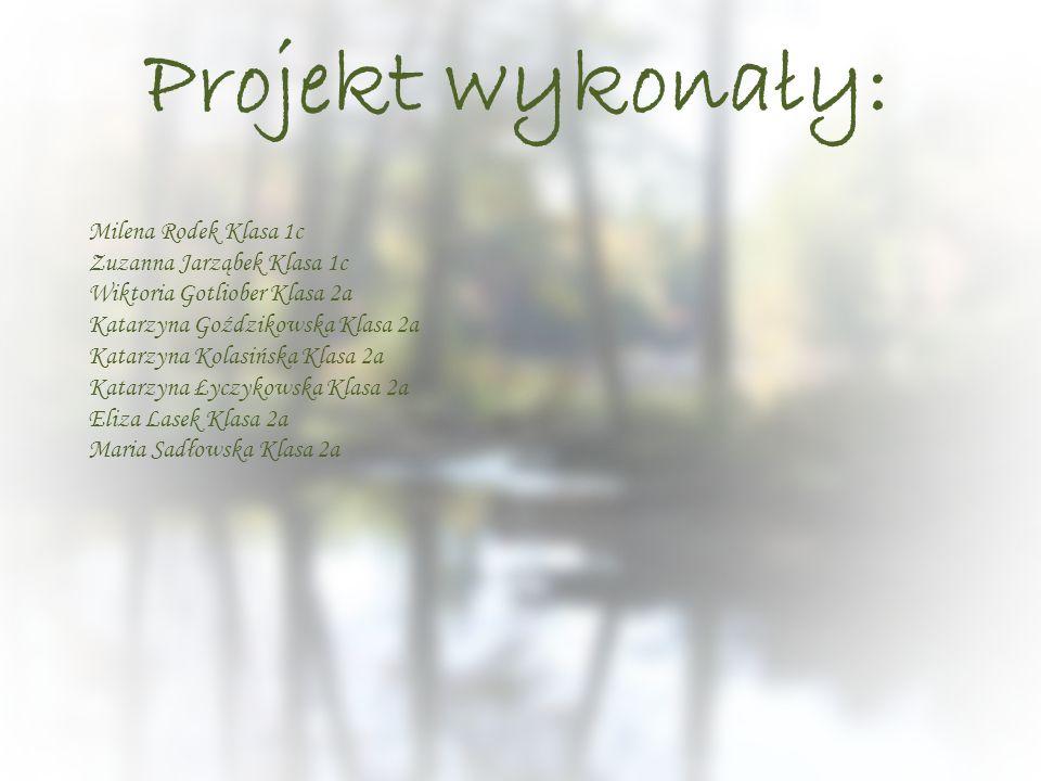 Projekt wykonały: Milena Rodek Klasa 1c Zuzanna Jarząbek Klasa 1c