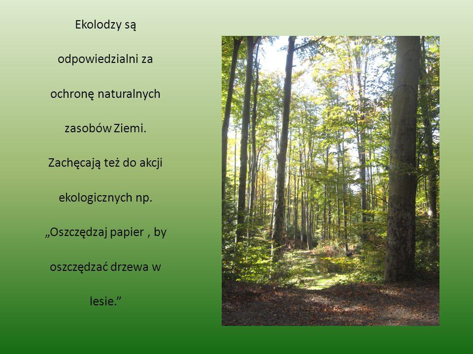 Ekolodzy są odpowiedzialni za ochronę naturalnych zasobów Ziemi
