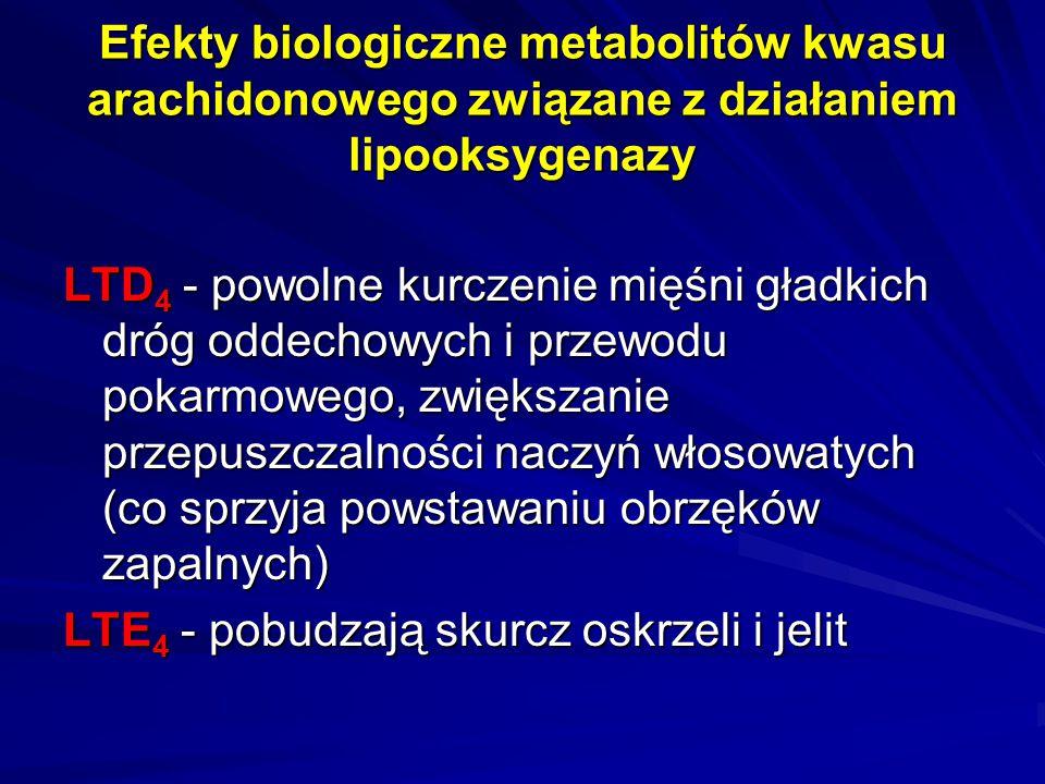 Efekty biologiczne metabolitów kwasu arachidonowego związane z działaniem lipooksygenazy