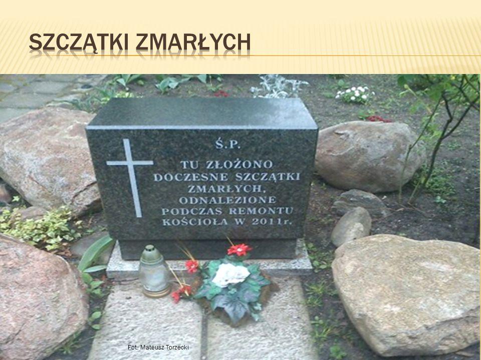 Szczątki zmarłych Fot. Mateusz Torzecki