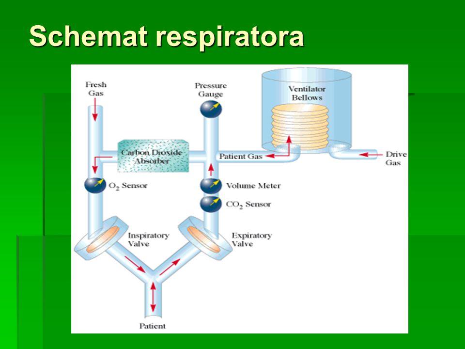 Schemat respiratora
