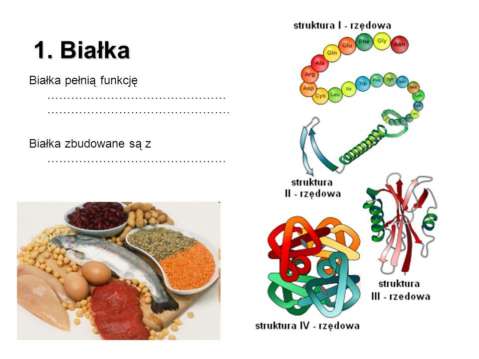 1. Białka Białka pełnią funkcję ……………………………………………………………………………….
