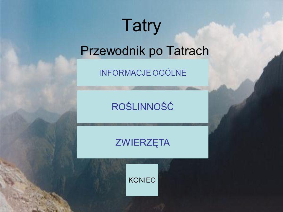 Tatry Przewodnik po Tatrach ROŚLINNOŚĆ ZWIERZĘTA INFORMACJE OGÓLNE
