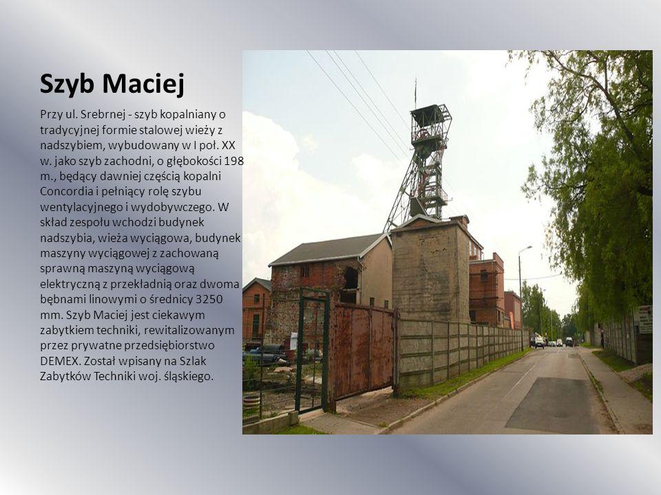 Szyb Maciej