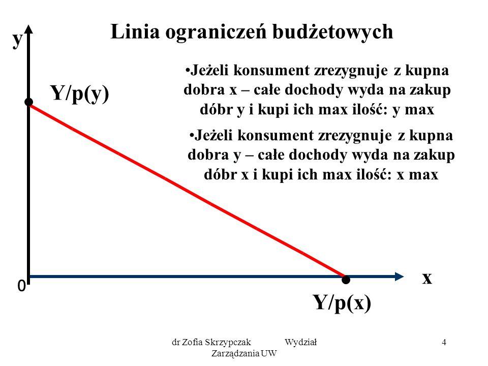 Linia ograniczeń budżetowych