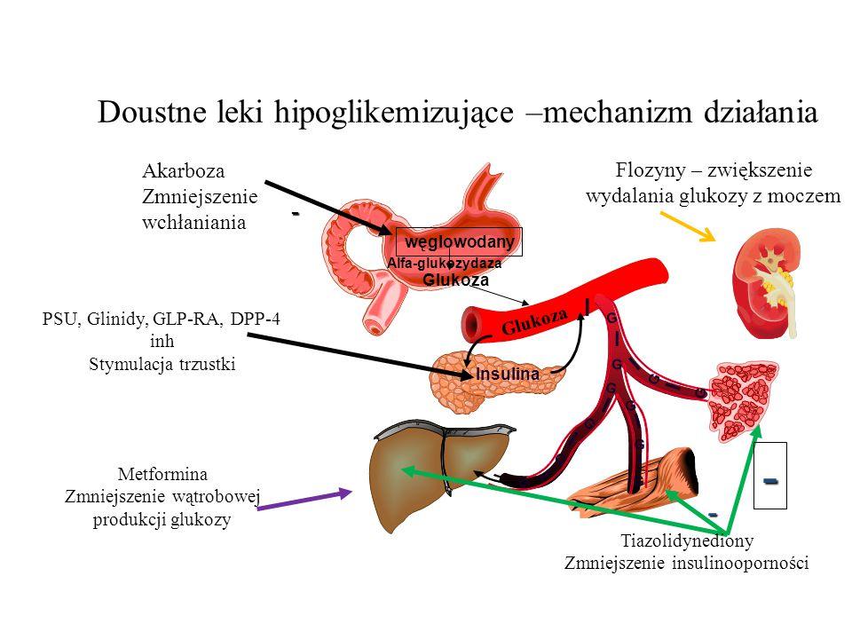 Doustne leki hipoglikemizujące –mechanizm działania