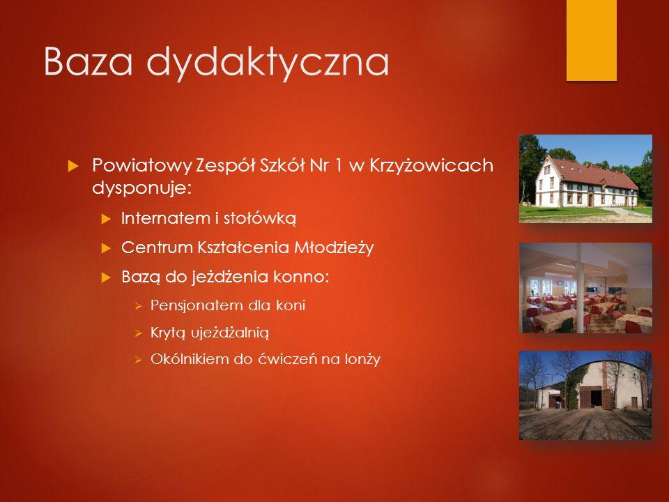 Baza dydaktyczna Powiatowy Zespół Szkół Nr 1 w Krzyżowicach dysponuje:
