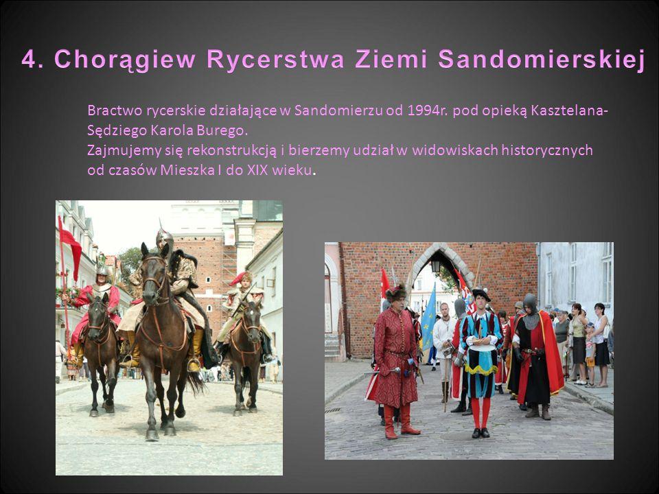 4. Chorągiew Rycerstwa Ziemi Sandomierskiej