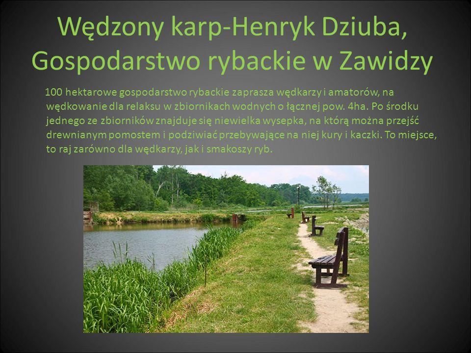 Wędzony karp-Henryk Dziuba, Gospodarstwo rybackie w Zawidzy