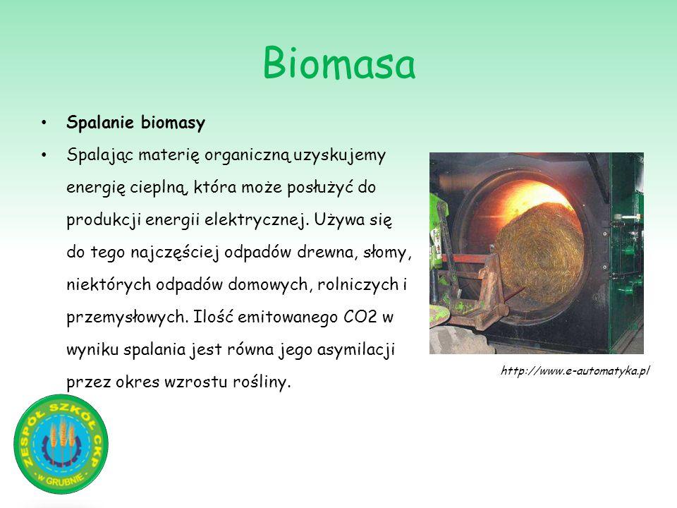 Biomasa Spalanie biomasy