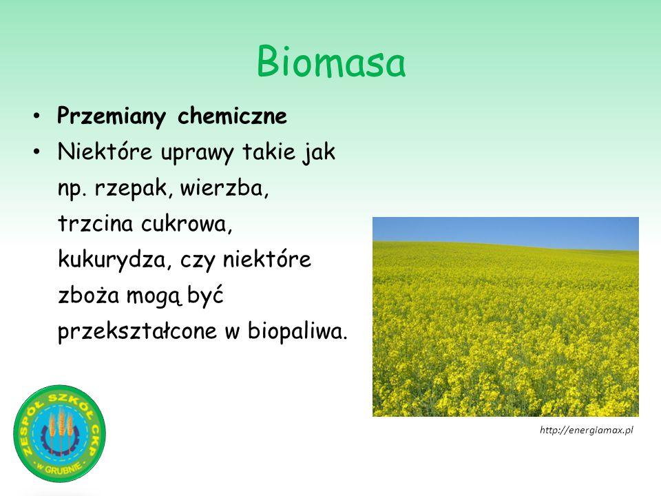 Biomasa Przemiany chemiczne