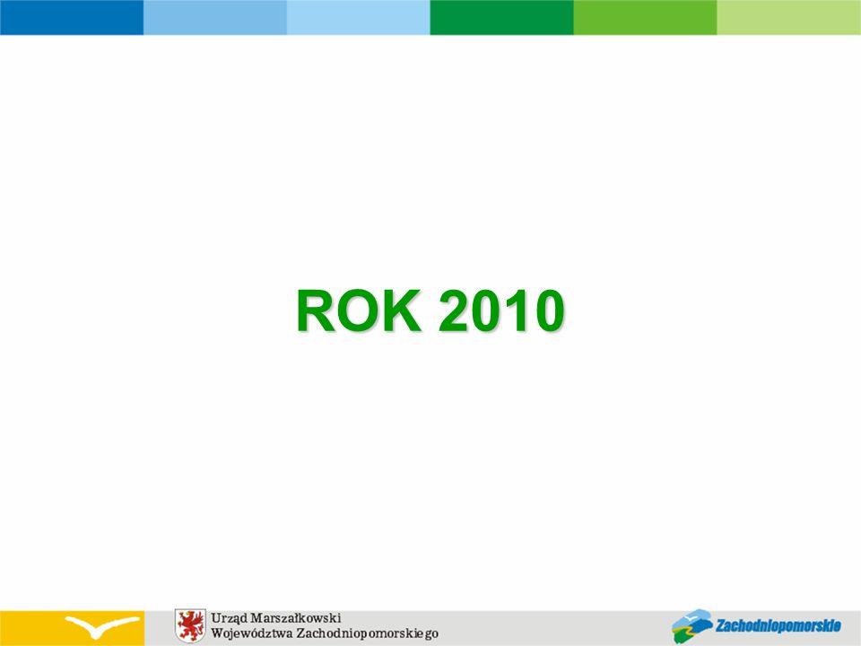 ROK 2010