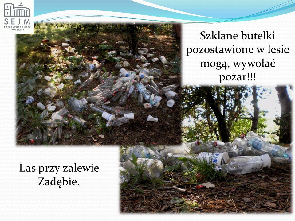 Szklane butelki pozostawione w lesie mogą, wywołać pożar!!!
