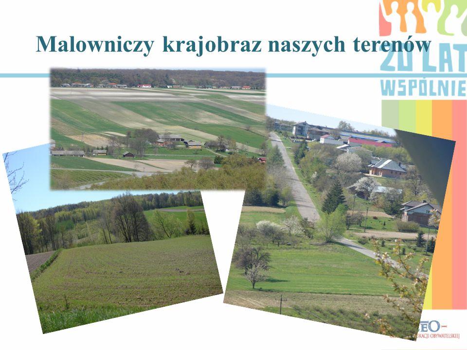 Malowniczy krajobraz naszych terenów