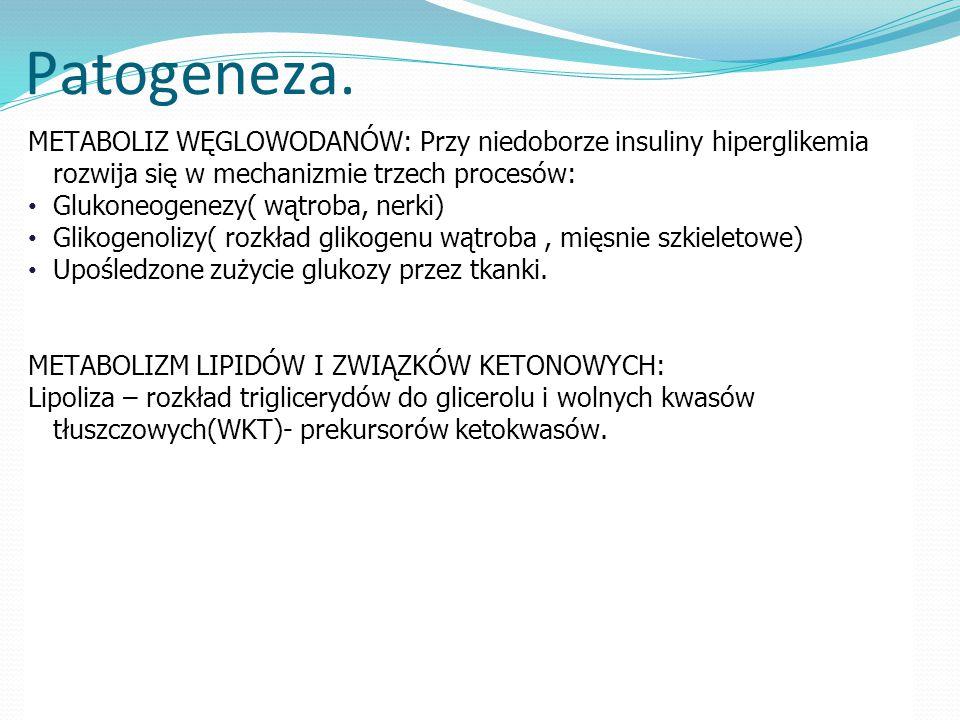 Patogeneza. METABOLIZ WĘGLOWODANÓW: Przy niedoborze insuliny hiperglikemia rozwija się w mechanizmie trzech procesów: