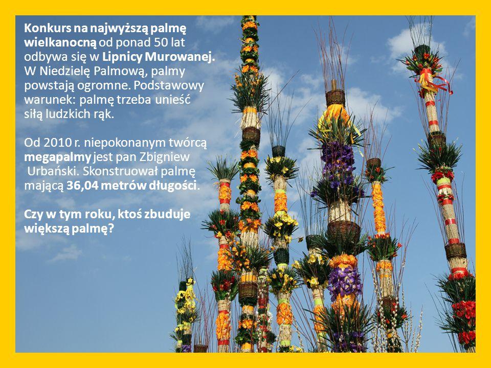 Konkurs na najwyższą palmę wielkanocną od ponad 50 lat