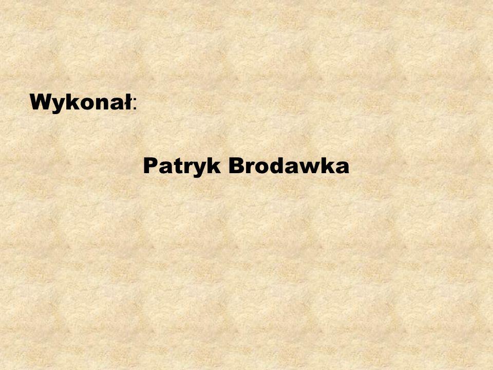 Wykonał: Patryk Brodawka