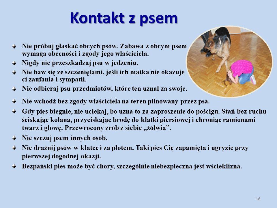 Kontakt z psem Nie próbuj głaskać obcych psów. Zabawa z obcym psem wymaga obecności i zgody jego właściciela.