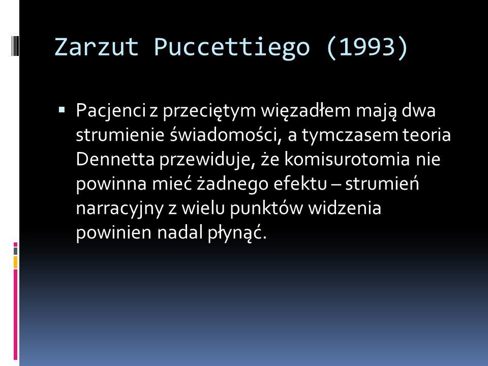 Zarzut Puccettiego (1993)