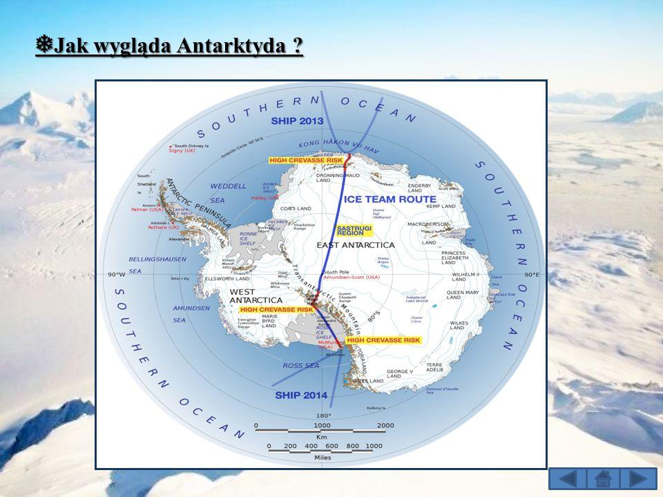 ❅Jak wygląda Antarktyda