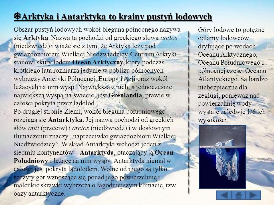 ❅Arktyka i Antarktyka to krainy pustyń lodowych