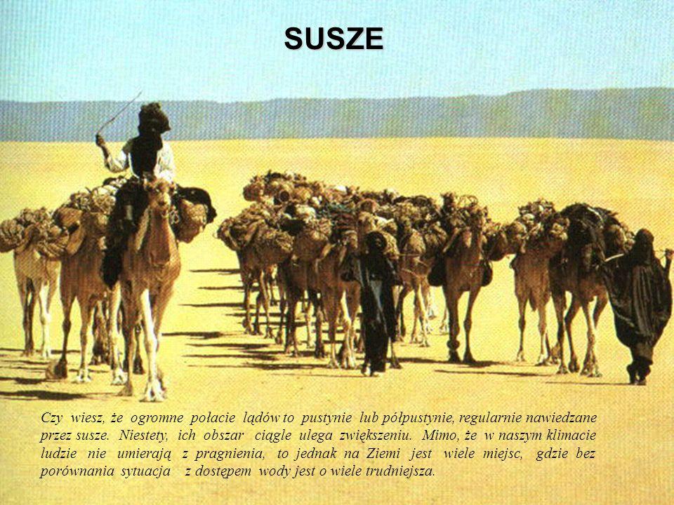 SUSZE